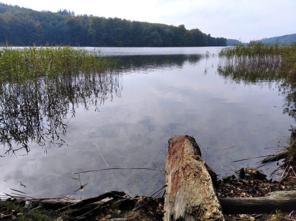 Jezioro Przywidzkie